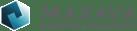 logo-maxava